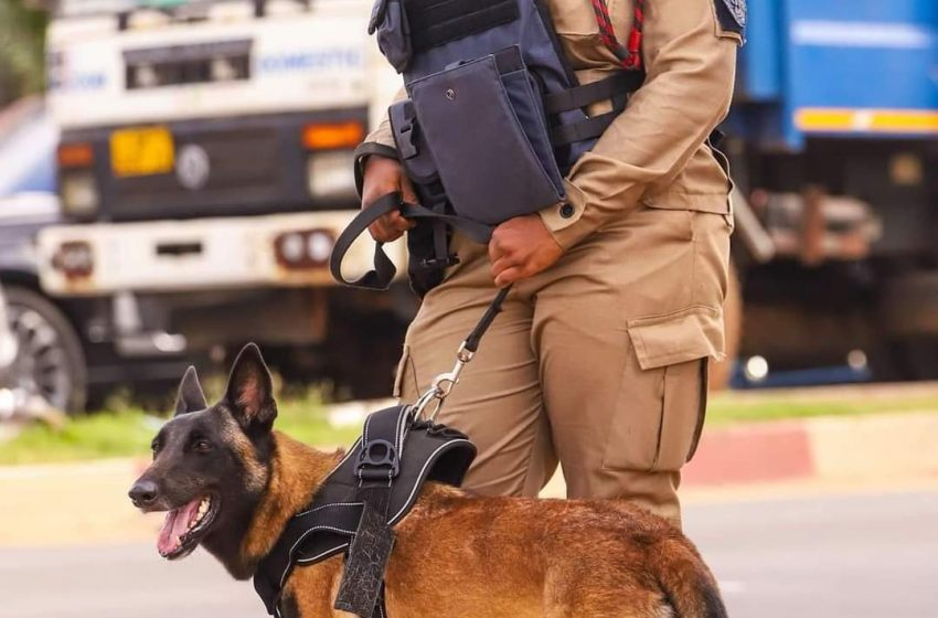 Ghana Police K-9 unit commences outdoor operations