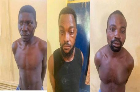 THREE KNAPPED WITH HUMAN PARTS IN VOLTA REGION.